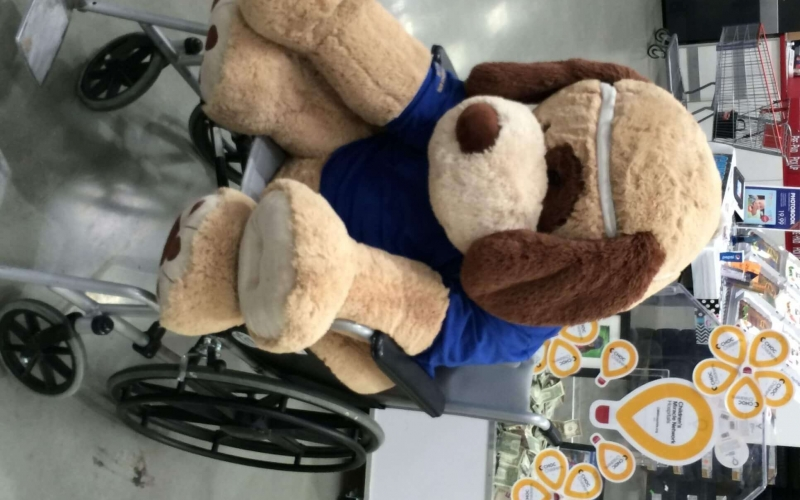 Mascot of Costco in their wholesale store