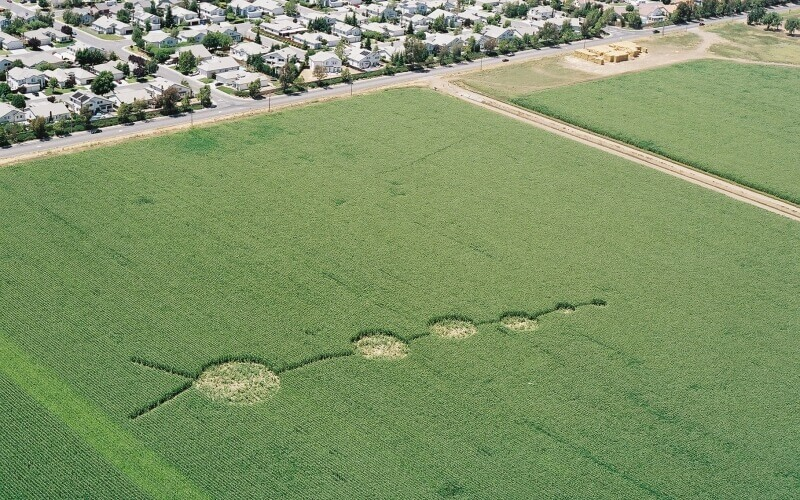 Vacaville City in California  Crop Circle in Green Field