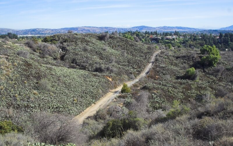 Roadways in between coyote hills in Fullerton
